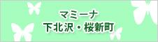 マミーナ下北沢・桜新町